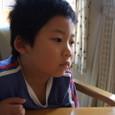 ヤマト(5歳)
